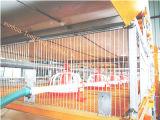 H tapent la capacité de 3tiers Hudge de cage complètement automatique de grilleur