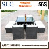 Популярные стул сада стула ротанга и таблица (SC-A7222)
