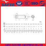 中国ISO 4026からの平らなポイント工場が付いているステンレス鋼304の六角形のソケットの止めねじ-中国の止めねじ、六角形のソケットの止めねじ