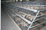 Geflügelfarm-Huhn-Gerät für Huhn-Haus