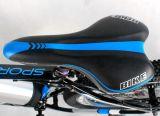 2016新しいMomelおよび熱い販売の電気自転車