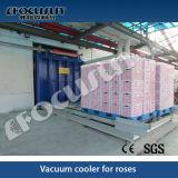 Vacuüm Pre-Cooling Machine