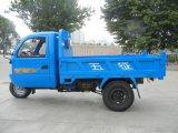 Geschlossene Ladung-motorisiertes Dieseldreirad 3-Wheel mit Kabine