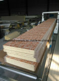 Comitati del metallo impressi alta qualità per la villa della struttura d'acciaio