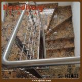 De decoratieve Balusters van het Roestvrij staal voor het Traliewerk van de Trap (sj-H1431)