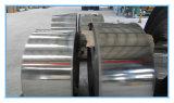 Bande 253mA d'acier inoxydable de qualité de constructeur