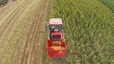 Maquinaria da ceifeira da colheita do milho doce de cor vermelha