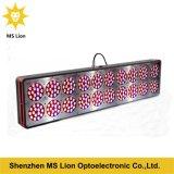 Dell'interno coltivare il LED chiaro coltivano la serra degli indicatori luminosi/medico per i commerci all'ingrosso