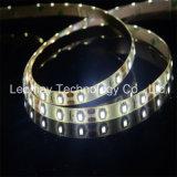 세륨 RoHS를 가진 유연한 24VDC SMD3528 LED 명부 지구 빛