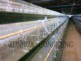 Vente chaude un type cages de batterie de volaille de couche pour la ferme de poulet de l'Algérie