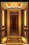 Ascenseur résidentiel de FUJI de constructeur professionnel