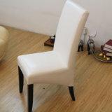 Qualität, welche die Stuhl-europäische Art speist Stuhl (M-X1042, speist)
