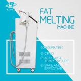 Ce de congelação gordo de Cryolipolysis da máquina da beleza do Liposuction do vácuo