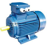 Y2 Series Cast Iron Three-Phase Asynchronous Induction Electric Motor com CE