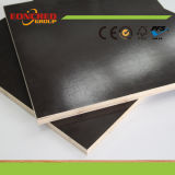 Black Dynea Brown Marine Film Faced Plywood