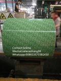 유사한 제품 접촉 공급자 Aluzinc/Galvalume 강철 코일