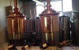 800L si dirigono la micro strumentazione utilizzata della fabbrica di birra