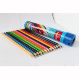 12 crayons de couleur dans le tube de bidon, crayons en bois de couleur