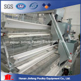 Hot Sell Automatic Poultry Equipment Cage for Layer Broiler Chicken