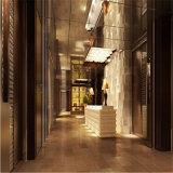 Шарик бронзы нержавеющей стали 316 цветов взорвал листы для лифта