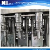 Het Vullen van het mineraalwater de Machines van de Installatie met Uitstekende kwaliteit
