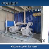Vakuumvorkühlenmaschine