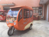 Triciclo eléctrico adulto verde con 4 asientos de pasajero
