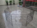 Qualitäts-Stahldraht-Zaun-Hund