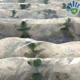 Het gewas behandelt Polypropyleen spon Niet-geweven Gestabiliseerd UV In entrepot van de Stof