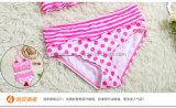 Fabrik-heißer Verkaufs-Mädchen-Bikini