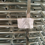 Оборудование фермы свиньи изготовленное гальванизированной стальной трубой