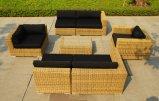 Meubles/sofa en osier extérieurs de Chesterfield réglé/doucement sofa réglé (SC-B6018-E2)