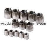Noix conique de construction d'acier inoxydable