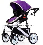 Baby-Rüttler-Spaziergänger/deluxer Baby-Spaziergänger