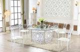 Metallo di disegno semplice che pranza la Tabella del ristorante con la mobilia del giardino