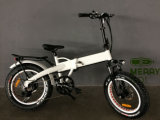 [36ف] [350و] كهربائيّة درّاجة [إ] درّاجة مع يخفى بطارية