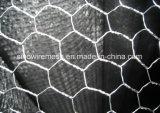 Vendita calda! ! ! Rete metallica esagonale galvanizzata fabbricazione professionale del pollo della fabbrica