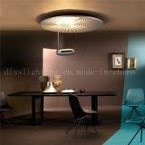 도매 은 색깔 룸 점화를 위한 대중적인 LED 천장 램프