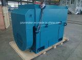 Série de Ykk, moteur asynchrone triphasé à haute tension de refroidissement air-air Ykk4505-4-560kw