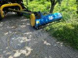 Faucheuse de fléau de bord pour le bord de la route, la garniture d'arbre et le paillage général