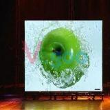écran polychrome d'intérieur d'Afficheur LED d'effet parfait de visibilité de 4mm