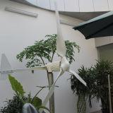 1kw de horizontale Turbogenerator van de Wind voor Landbouwbedrijf (shj-WH1000)