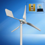 600W van het Systeem van de Generator van de Wind van het Net 24V met Controlemechanisme en Omschakelaar