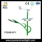 Luz de calle solar popular híbrida solar del viento