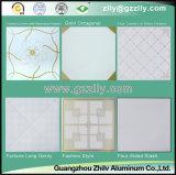 Estilo de la moda Roller Coating Panel de impresión de techo para material de construcción