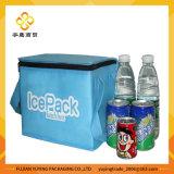 Saco do refrigerador do organizador do saco de Tote do piquenique (YYCB033)