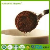 2017の新製品のベトナムからの自然なArabicaのコーヒー