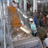 Машина транспортера пластичного шабера инженерства поднимаясь для фрукт и овощ