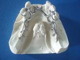 Marco movible dental del metal (Co-Cr) hecho en el laboratorio dental de China