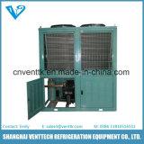 Unidade de Condensador de Baixa Temperatura para Cogumelos Frescos